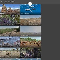 Google Street View – Explora maravillas naturales y monumentos del mundo