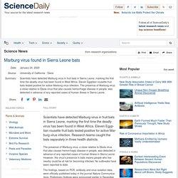 SCIENCEDAILY 24/01/20 Marburg virus found in Sierra Leone bats