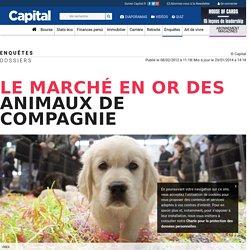 Le marché en or des animaux de compagnie