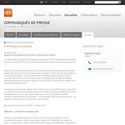 Bilan 2013 des marchés des biens techniques en France