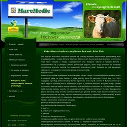 MarcMedic - producent preparatów i odżywek dla zwierząt