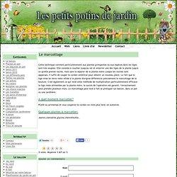 Le marcottage - Fleurs et légumes en pot
