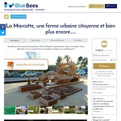 La Marcotte, une ferme urbaine citoyenne et bien plus encore… - BlueBees
