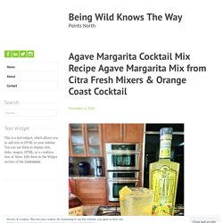 Agave Margarita Cocktail Mix Recipe Agave Mango Margartia Mix from Citra Fresh Mixers & Orange Coast Cocktail