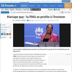 France : Mariage gay: la PMA se profile à l'horizon