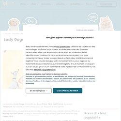 Lady Gaga s'est mariée avec son chien ! (Photos) - People