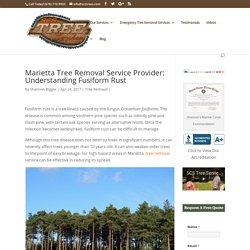 Marietta Tree Removal Service Provider: Understanding Fusiform Rust