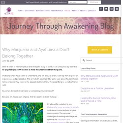 Why Marijuana and Ayahuasca Don't Belong Together — AfterLife Coach