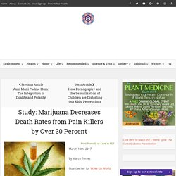 Study: Marijuana Decreases Death Rates from Pain Killers by Over 30 Percent