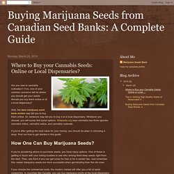 Buying Marijuana Seeds from Canadian Seed Banks: A Complete Guide: Where to Buy your Cannabis Seeds: Online or Local Dispensaries?