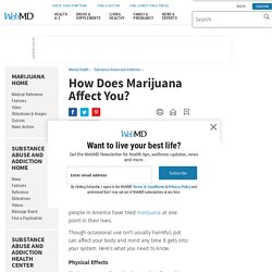 Marijuana: How Does It Affect You?