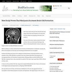 New Study Proves That Marijuana Increases Brain Cell Formation