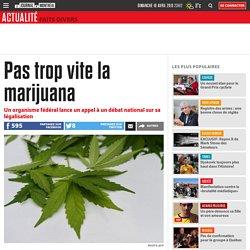 Pas trop vite la marijuana