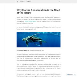 Why Marine Conservation is the Need of the Hour?