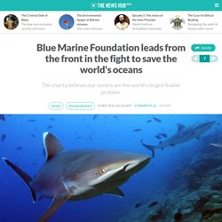 Blue Marine Foundation leads from the front in the fight to save the world's oceans