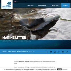 Marine litter - Surfrider