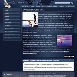 Marine Mammal Program