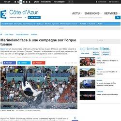 Marineland face à une campagne sur l'orque tueuse - France 3 Côte d'Azur