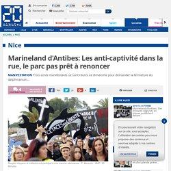Marineland d'Antibes: Les anti-captivité dans la rue, le parc pas prêt à renoncer