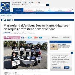 Marineland d'Antibes: Des militants déguisés en orques protestent devant le parc