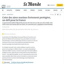 Créer des aires marines fortement protégées, un défi pour la France