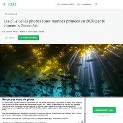 14 jan. 2021 Les plus belles photos sous-marines primées en 2020 par le concours Ocean Art - Geo.fr