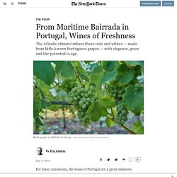 From Maritime Bairrada in Portugal, Wines of Freshness