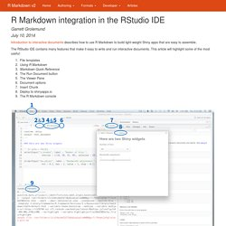 R Markdown integration in the RStudio IDE