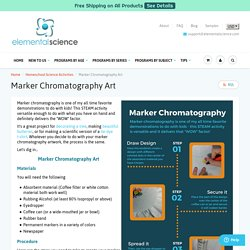 Marker Chromatography Art {A STEAM Activity}