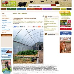 7 Market Crops You Can Grow in a Greenhouse - Hobby Farms