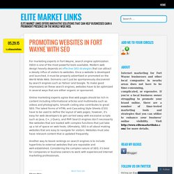PROMOTING WEBSITES IN FORT WAYNE WITH SEO
