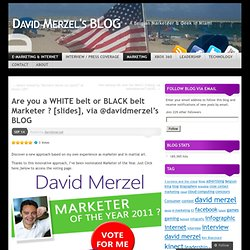 Blog David Merzel