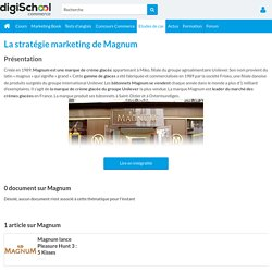 Magnum : Etudes, Analyses Marketing et Communication de Magnum