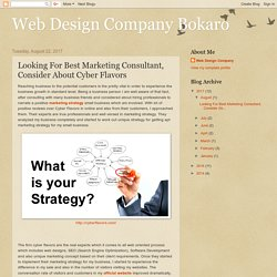Looking For Best Marketing Consultant, Consider About Cyber Flavors