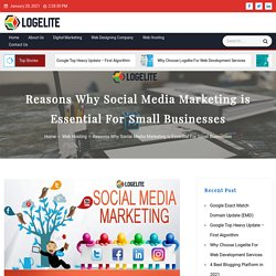 Reasons Why Social Media Marketing is Essential For Small Businesses - Logelite