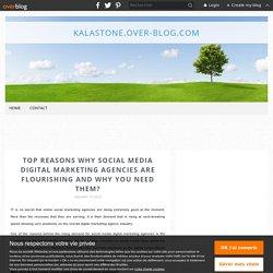 Top Reasons Why Social Media Digital Marketing Agencies Are Flourishing And Why You Need Them? - Kalastone.over-blog.com
