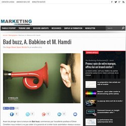 Bad buzz, A. Babkine et M. Hamdi