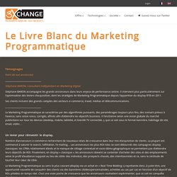 Le Livre Blanc du Marketing Programmatique