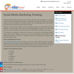 Social Media Marketing (SMM) Training in Bhopal, SMO Training Institute