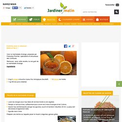Marmelade d'orange : délicieuse, facile et rapide