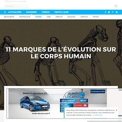 11 marques de l'évolution sur le corps humain