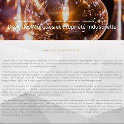 Droit des Marques et Propriété Industrielle