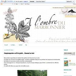ou l'Art au jardin ... Chaumont sur Loire