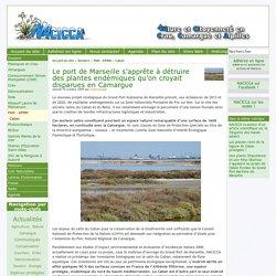 Le port de Marseille s'apprête à détruire des plantes endémiques qu'on croyait disparues en Camargue - [Nacicca]