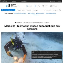 Marseille : bientôt un musée subaquatique aux Catalans - France 3 Provence-Alpes-Côte d'Azur