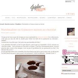 Recette de Marshmallow ou Guimauve maison au chocolat