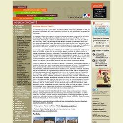 Comité national pour la Mémoire et l'Histoire de l'Esclavage-Martinique
