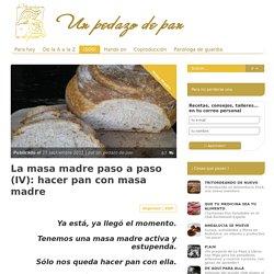 La masa madre paso a paso (IV): hacer pan con masa madre