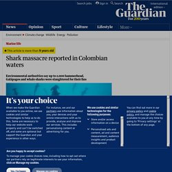 Shark massacre reported in Colombian waters | Environment