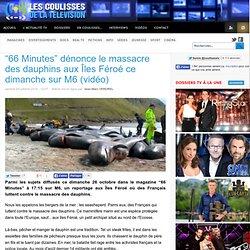 """""""66 Minutes"""" dénonce le massacre des dauphins aux Îles Féroé ce dimanche sur M6 (vidéo)"""